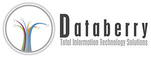 Hostway Customer: Databerry